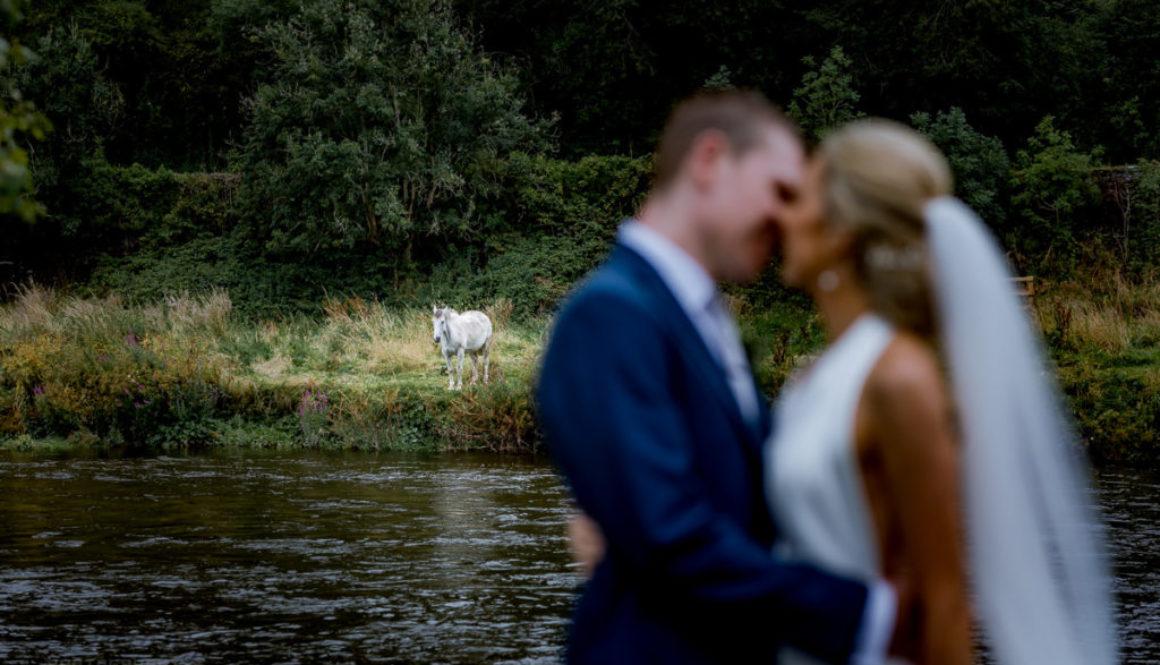 Step-House-Hotel-Borris-Carlow; Wedding-Photographer; wedding-photographer-carlow; kilkenny-wedding-photographer; dublin-wedding-photographer; dublin-wedding; natural-wedding-photographer; best-wedding-photographer; modern-style-wedding photographer; best-wedding-photographer-Dublin; Wicklow; Cork; Waterford; wexford; meath; kildare; one-fab-day, wedding-dress